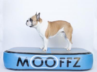 Mooffz airkussen L100 x B60 x H20 cm, blauw, inclusief voetpomp